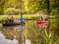 Waterschap onderzoekt plantensterfte De Dommel, deel rivier afgesloten voor kano's