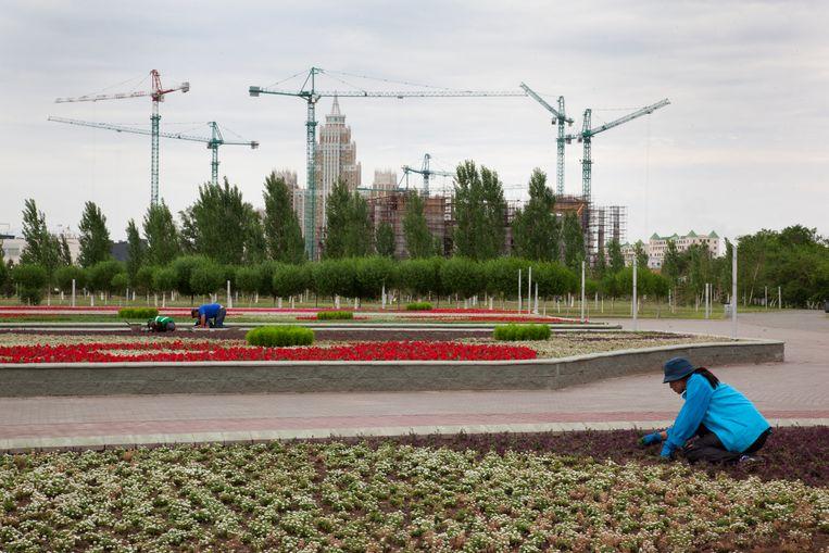 Een tuinier richt zich op de net aangelegde bloemen, met in de achtergrond downtown Astana in aanbouw. Beeld null