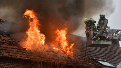 Cannabisplantage is oorzaak van brand in hoevewoning; bewoner aangehouden