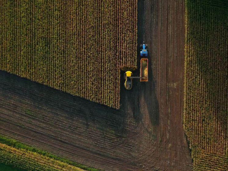 Prachtige beelden van het hakselen in Twente