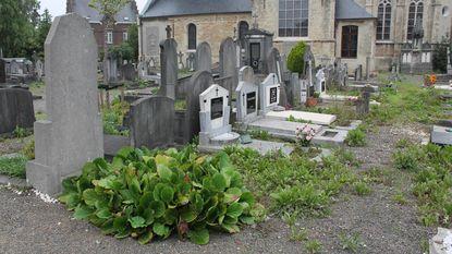 Oude begraafplaats ligt er verloederd bij