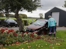 Twee auto's belanden bij ongeluk in voortuin; appelboom verliest fruit
