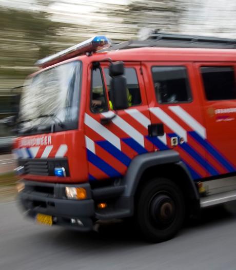 Coniferenhaag in brand in Moerkapelle