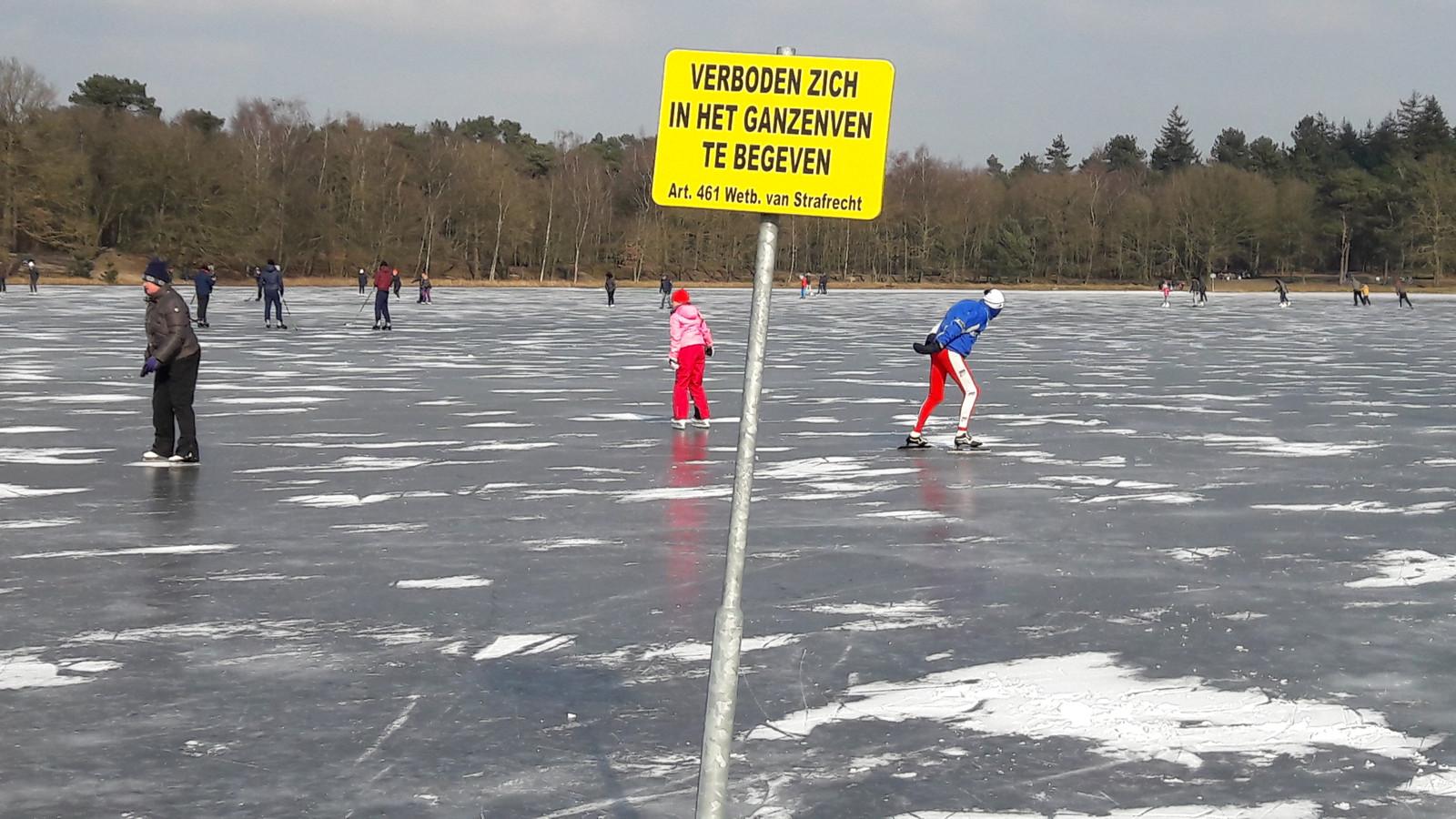 Een bevroren Ganzenven op Herperduin.