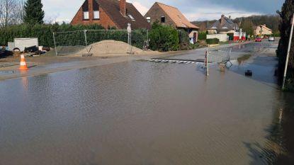 Sterrebeeksesteenweg in vier dagen tijd evenveel keer onder water: ene afvoerkoker niet aangesloten, andere verstopt