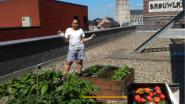 Novotel hotel met beste landelijke tuin