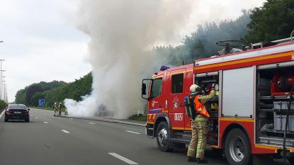 Bestelwagen brandt volledig uit op E40