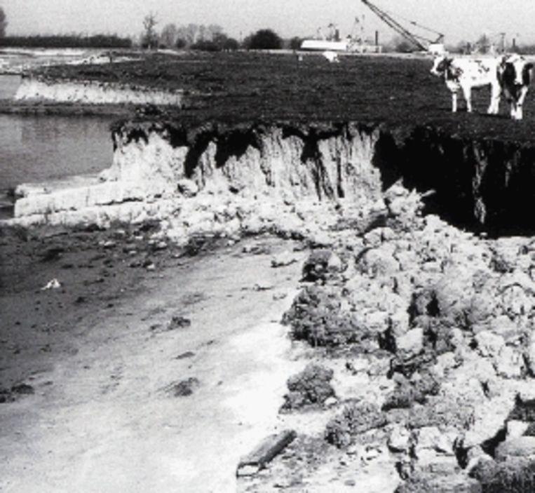 De IJssel had tot begin jaren zestig zandige oevers, waaraan de rivier naar hartelust mocht knagen. (FOTO HENK KOOLWAAIJ) Beeld