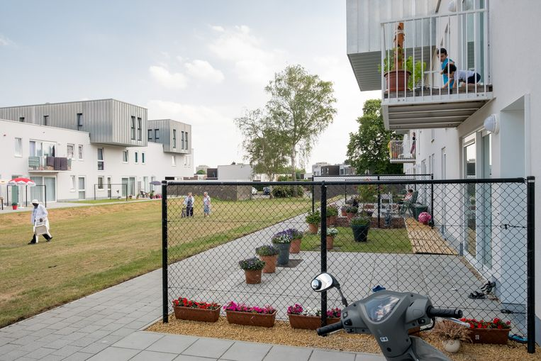 Woningen van Woonpunt in de Abeelstraat.