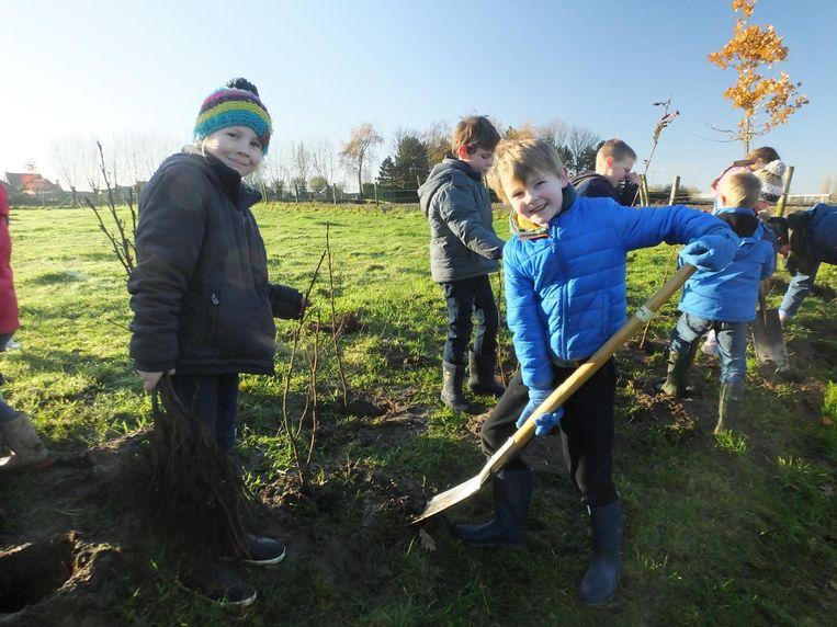 De leerlingen van De Sterrebloem planten boompjes in de Zeverenbeekvallei.