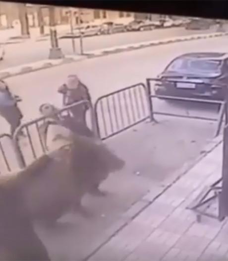 Agent vangt kind na metershoge val uit appartement