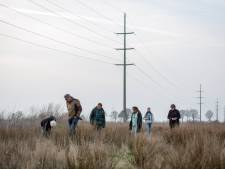 Natuur verdwijnt op groenste stukje Bedrijvenpark Almelo: 'We bewaren de grond voor later'