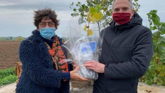 Eerste stekje van gesneuvelde Vollanderboom is voor Vlaams minister Matthias Diependaele