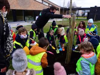 Teamwork op campus Sint-Pieter: leerlingen planten samen bomen op nieuw schooldomein