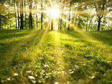 Meteorologen: Lente 2020 'recordzonnig' begonnen