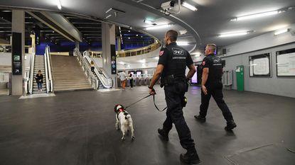 Britse politie gebruikt door FBI getrainde honden om pedofielen te ontmaskeren