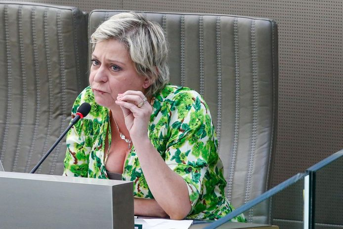 Vlaams parlementslid Katia Segers (sp.a).