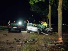 Grote ravage nadat automobilist tegen boom botst in Riel