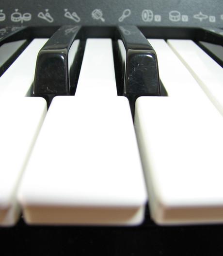 Toonbeeld spreidt vleugels uit naar Oostburg met muziekles