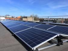 Durendael komt in Oisterwijk onder de zonnepanelen te liggen