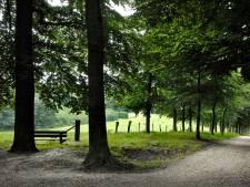 Arnhem is klaar met protest en wil dunnen nieuwe boomlanen voorkomen