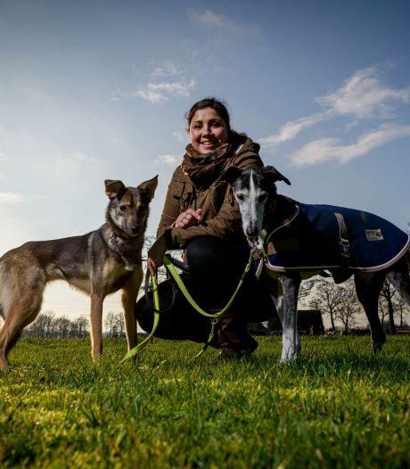 Isha uit Hellendoorn bezorgd over in coronatijd aangeschafte honden: 'Straks zitten de asielen boordevol'