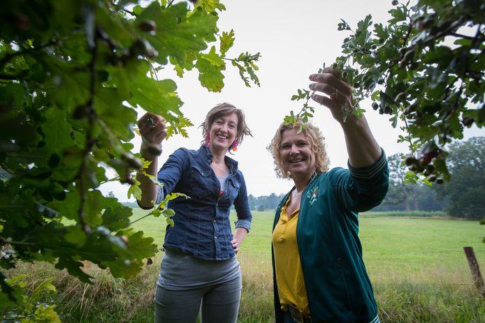 Jantine Schinkelshoek uit Olst (links) en Jet Nieboer zetten zich met hun stichting in voor zoveel mogelijk heggen in Nederland. Essentieel voor de biodiversiteit, weten ze.