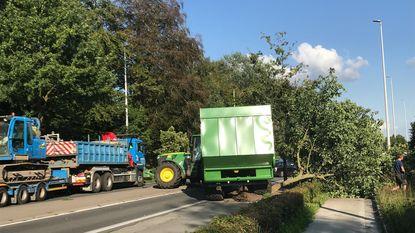 Tractor ramt boom: steenweg versperd