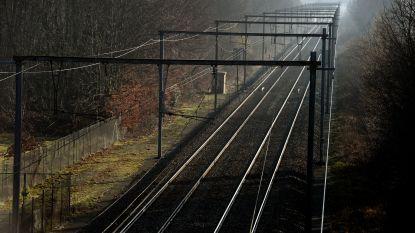 Treinverkeer hervat na ongeval in Schellebelle