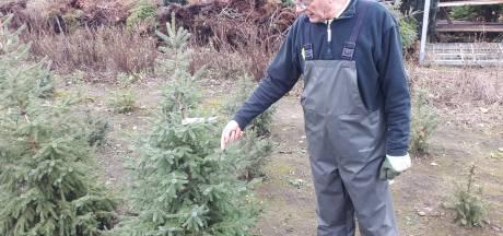 Kerstbomen koop je op een vertrouwd adres: 'Ik zet er twee op het toilet'