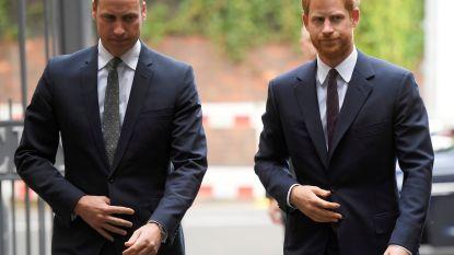 """Het zit al jaren scheef tussen Harry en William: """"Hij wil gewoon een teken dat hij erbij hoort"""""""