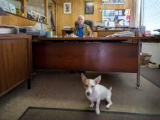 Na 111 jaar stopt drukkerij Van Dijk Van Hees: 'Emotie in het drukwerk, dat is het mooist'
