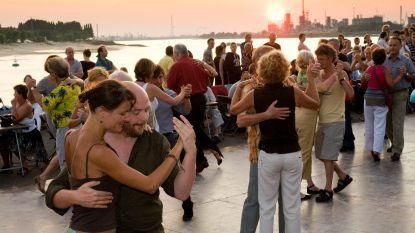 Opnieuw twee maanden lang dansen aan de Scheldebocht