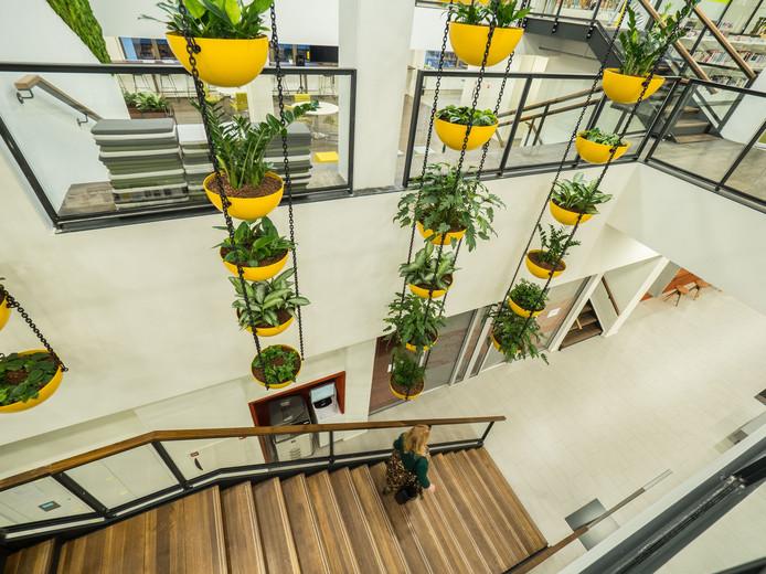 Het interieur van het nieuwe stadhuis: veel planten, bloemen en licht.