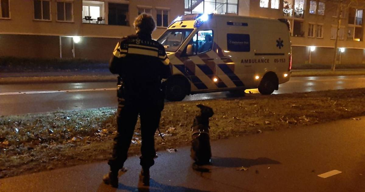 Voetganger met hond gewond bij aanrijding, scooterbestuurder rijdt door.