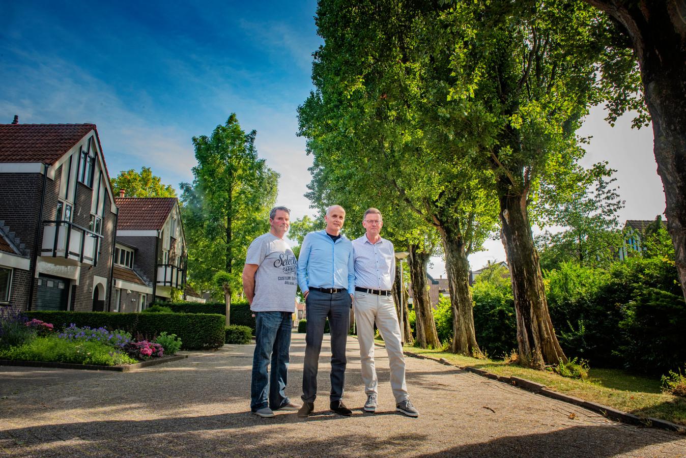Deze populieren zorgen voor schaduw in de omliggende huizen. Volgens Ben Rijgersberg, Lucil Pieterman en Fred Brand moeten de bomen daarom weg. Anderen vinden juist van niet.