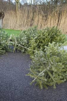Stichtse Vecht stopt met kinderloterij voor inzamelen kerstbomen