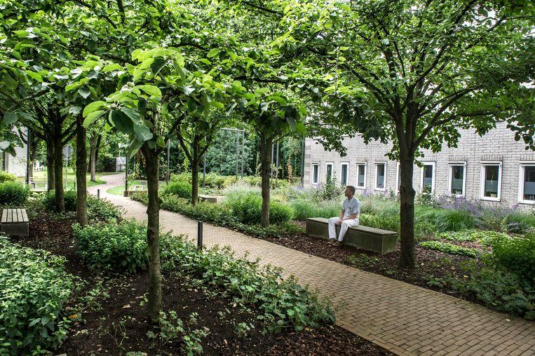Een van de vier tuinen in het het Radboudumc in Nijmegen, waar patiënten niet het gevoel hebben dat ze op een gesloten afdeling zitten. Beeld Koen Verheijden