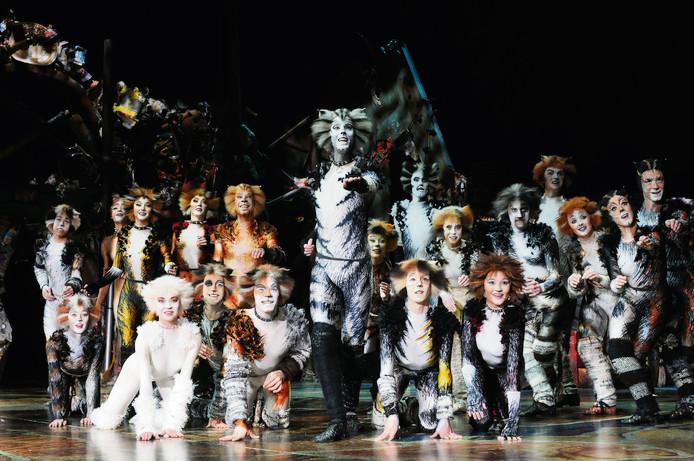 De cast van Cats.