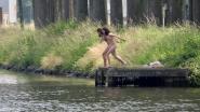 """VIDEO. Brugse jongeren zoeken verkoeling in kanaal, maar politie waarschuwt: """"Levensgevaarlijk om tussen scheepvaart te zwemmen"""""""