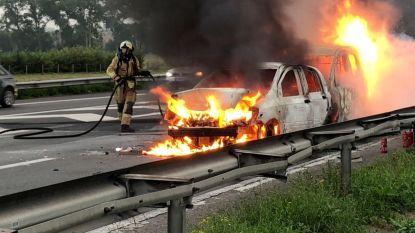 Brandende auto's veroorzaken file op E403 richting Brugge