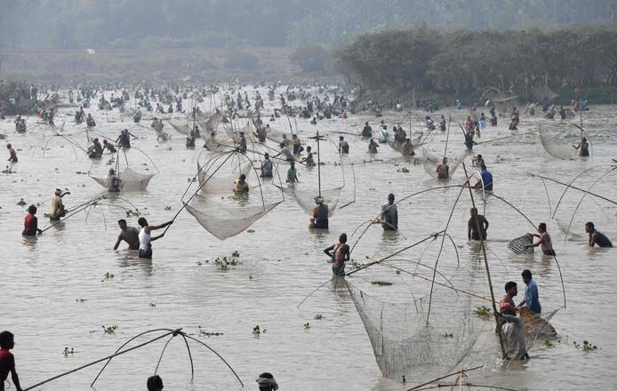 Indiase dorpsbewoners nemen deel aan de jaarlijkse massale viswedstrijd in het Goroimari-meer ter ere van het oogstfeest in de buurt van Guwahat. Foto Biju Boro
