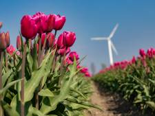 Provincie Flevoland verhoogt subsidies voor het platteland