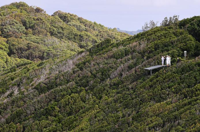 Vrijwilligers kijken uit over het bosgebied waar Théo Hayez zou kunnen zijn.