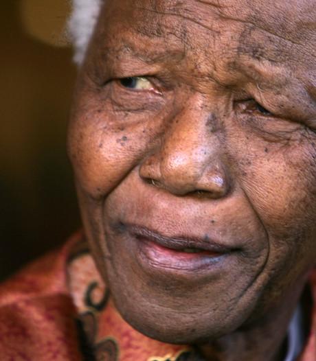 Gedenkteken Nelson Mandela in Heesch