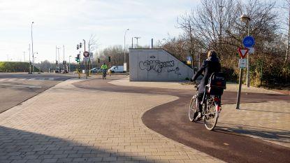 """""""Rijd hier maar eens met bakfiets vol kinderen"""": vreemde kronkel op nieuw fietspad Collegelaan is te gek voor woorden"""