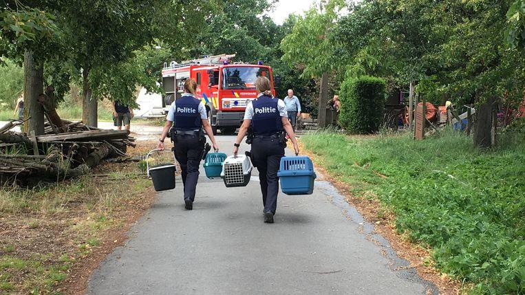 PUTTE - De lokale politiezone van Bodukap kon de huisdieren van de buurtbewoners in veiligheid brengen