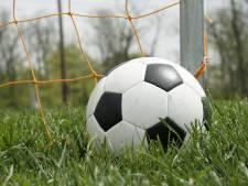 Van der Linden stopt als hoofdtrainer bij VV Wernhout