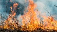 Bolivia getroffen door zwaarste brand in 15 jaar