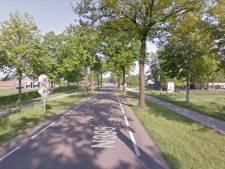 Raad Hilvarenbeek eist ruimere compensatie van provincie voor bomenkap langs N395 in Diessen